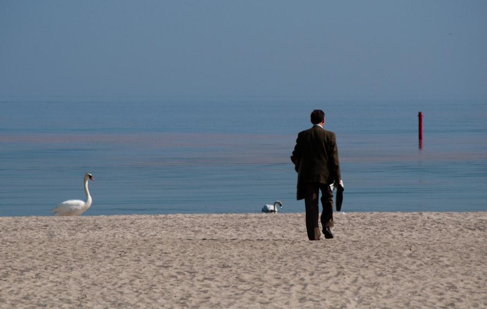 realtor on the beach casafari