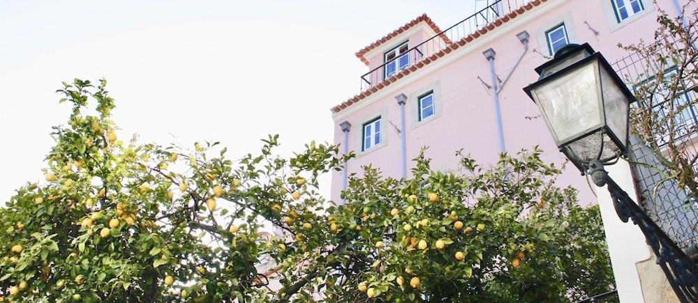 Campo de Ourique Property Guide
